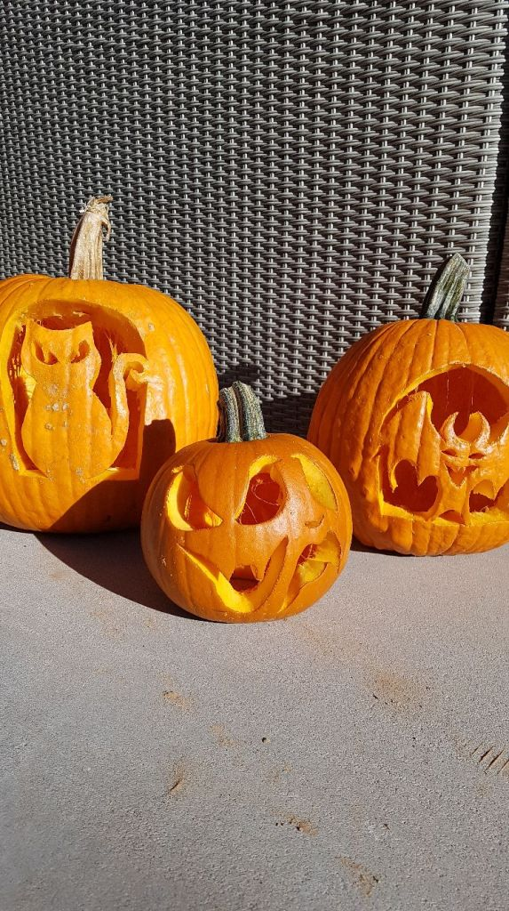 scarving pumpkins